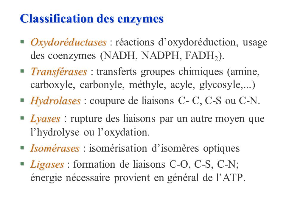 Classification des enzymes