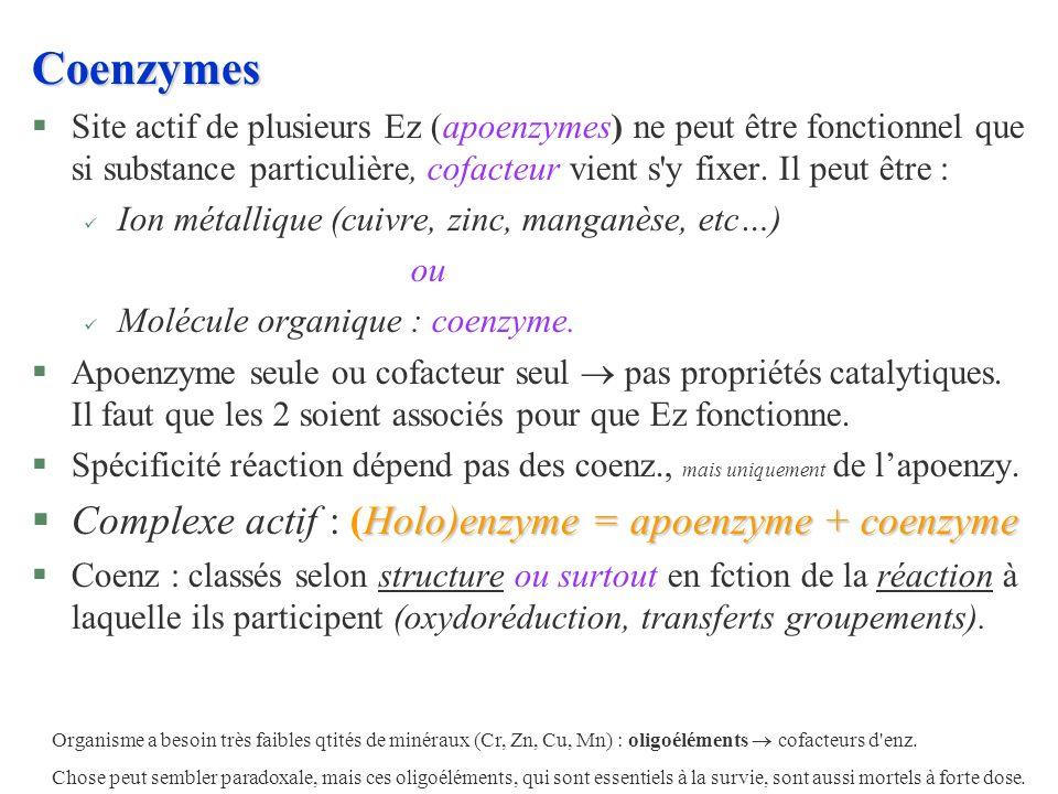 Coenzymes Complexe actif : (Holo)enzyme = apoenzyme + coenzyme