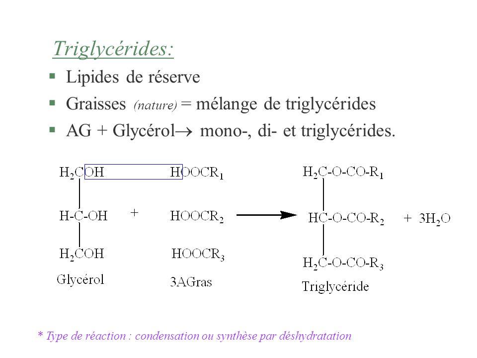 Graisses (nature) = mélange de triglycérides