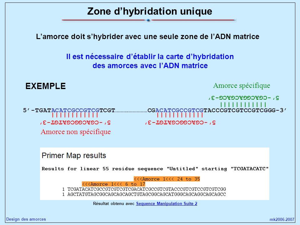 Zone d'hybridation unique