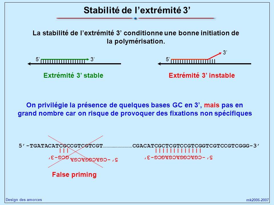 Stabilité de l'extrémité 3'