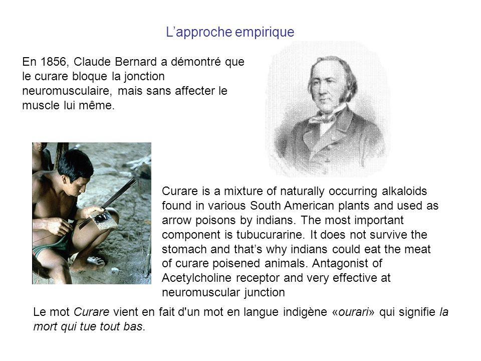 L'approche empirique En 1856, Claude Bernard a démontré que le curare bloque la jonction neuromusculaire, mais sans affecter le muscle lui même.