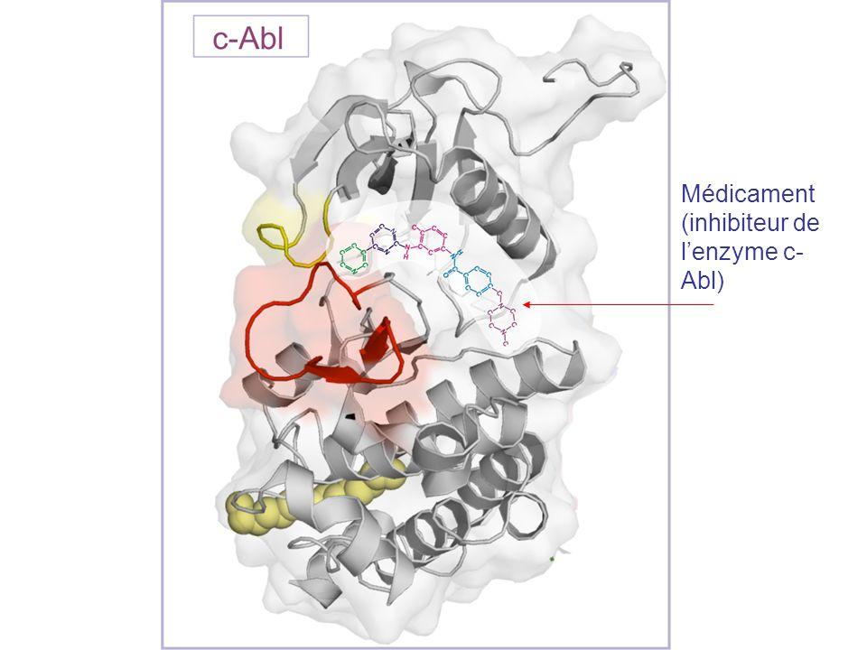 Médicament (inhibiteur de l'enzyme c-Abl)