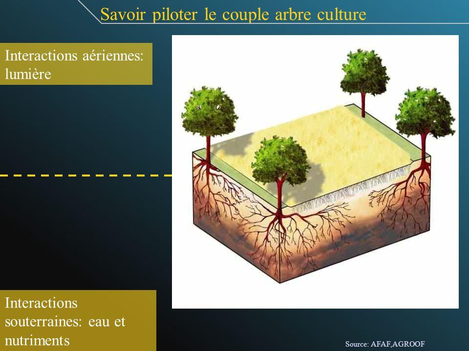 Savoir piloter le couple arbre culture