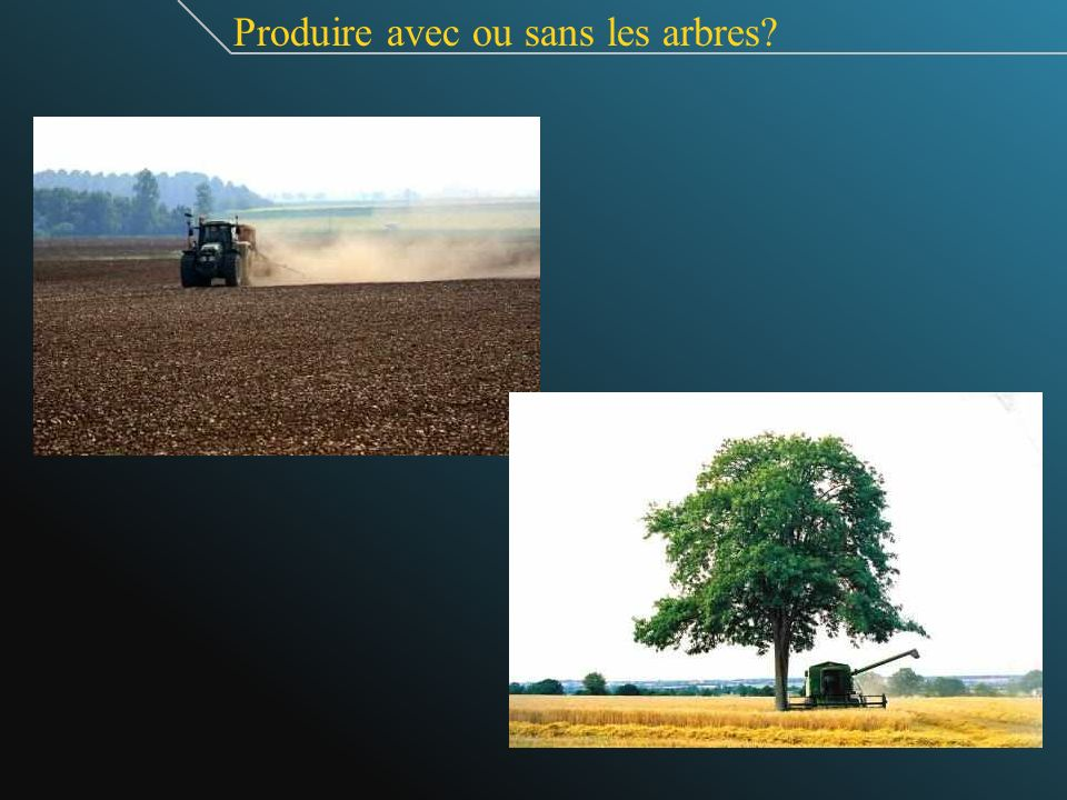 Produire avec ou sans les arbres