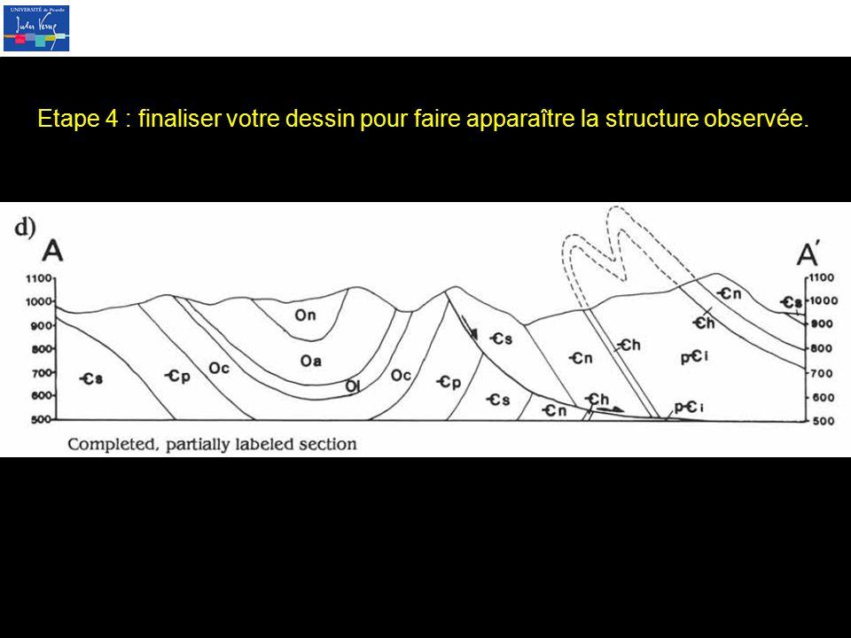 Etape 4 : finaliser votre dessin pour faire apparaître la structure observée.