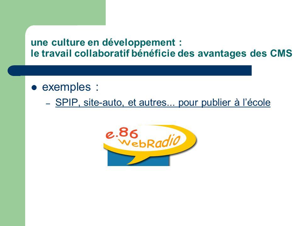 une culture en développement : le travail collaboratif bénéficie des avantages des CMS