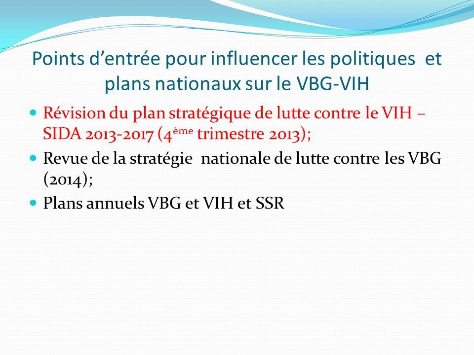 Points d'entrée pour influencer les politiques et plans nationaux sur le VBG-VIH