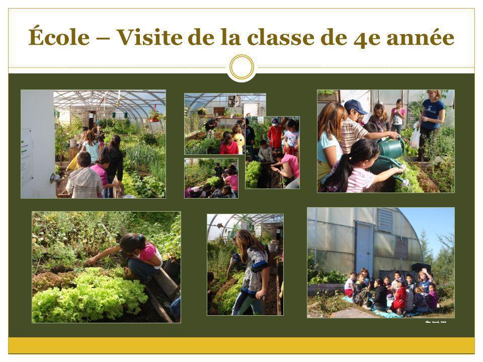 École – Visite de la classe de 4e année