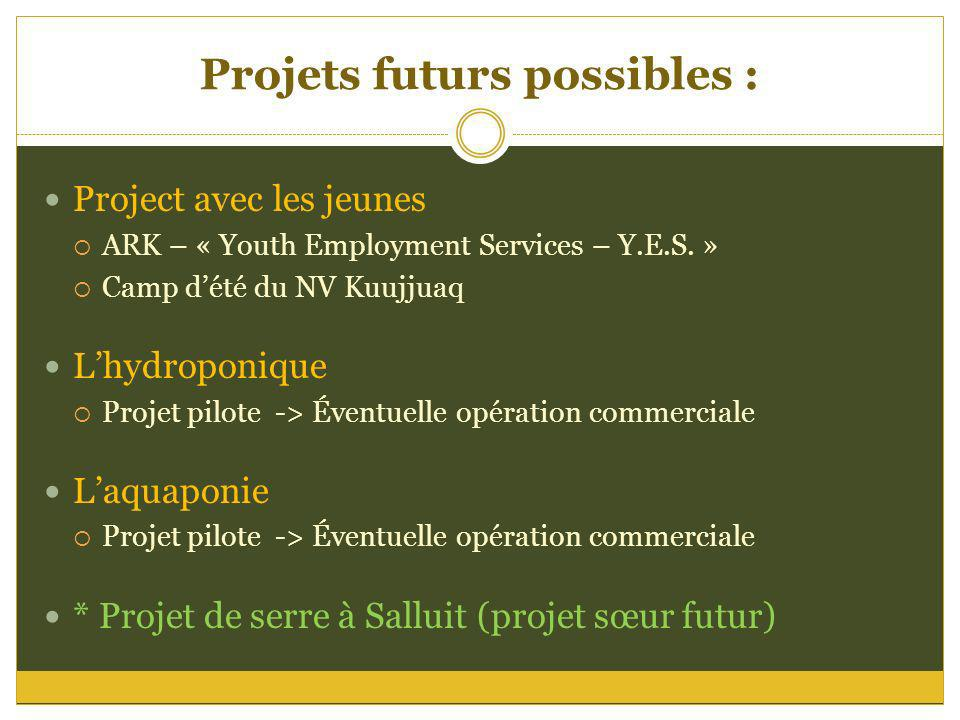 Projets futurs possibles :