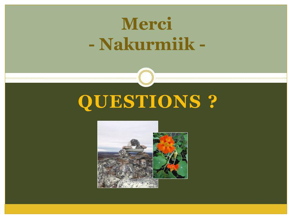 Merci - Nakurmiik - QUESTIONS