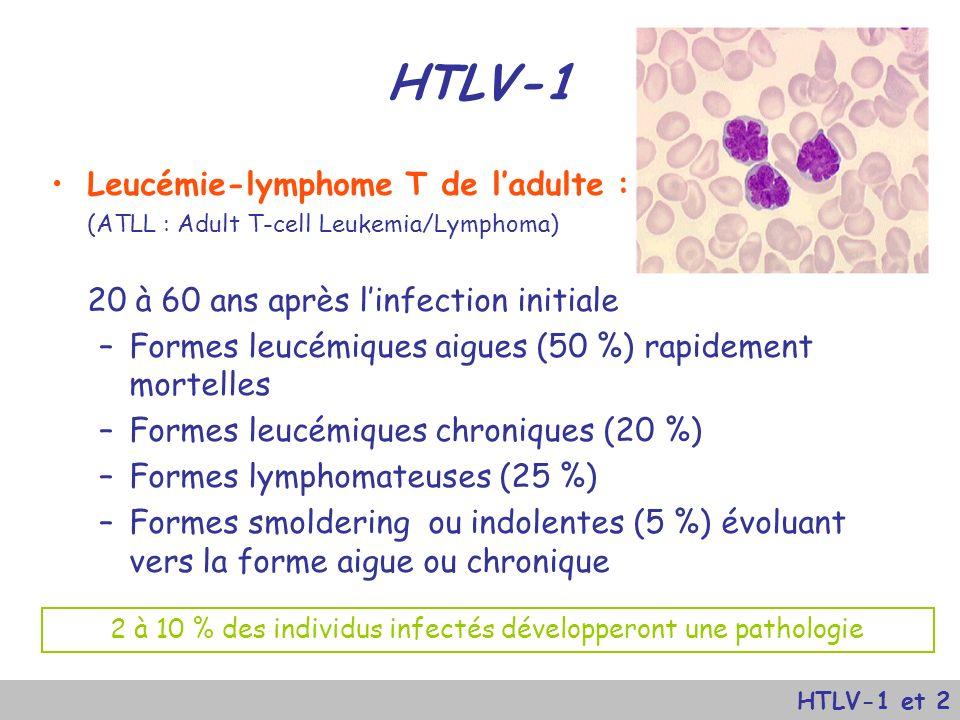 htlv 1 et htlv 2 htlv 1 human t cell lymphotrophic virus type 1 ppt video online t l charger. Black Bedroom Furniture Sets. Home Design Ideas