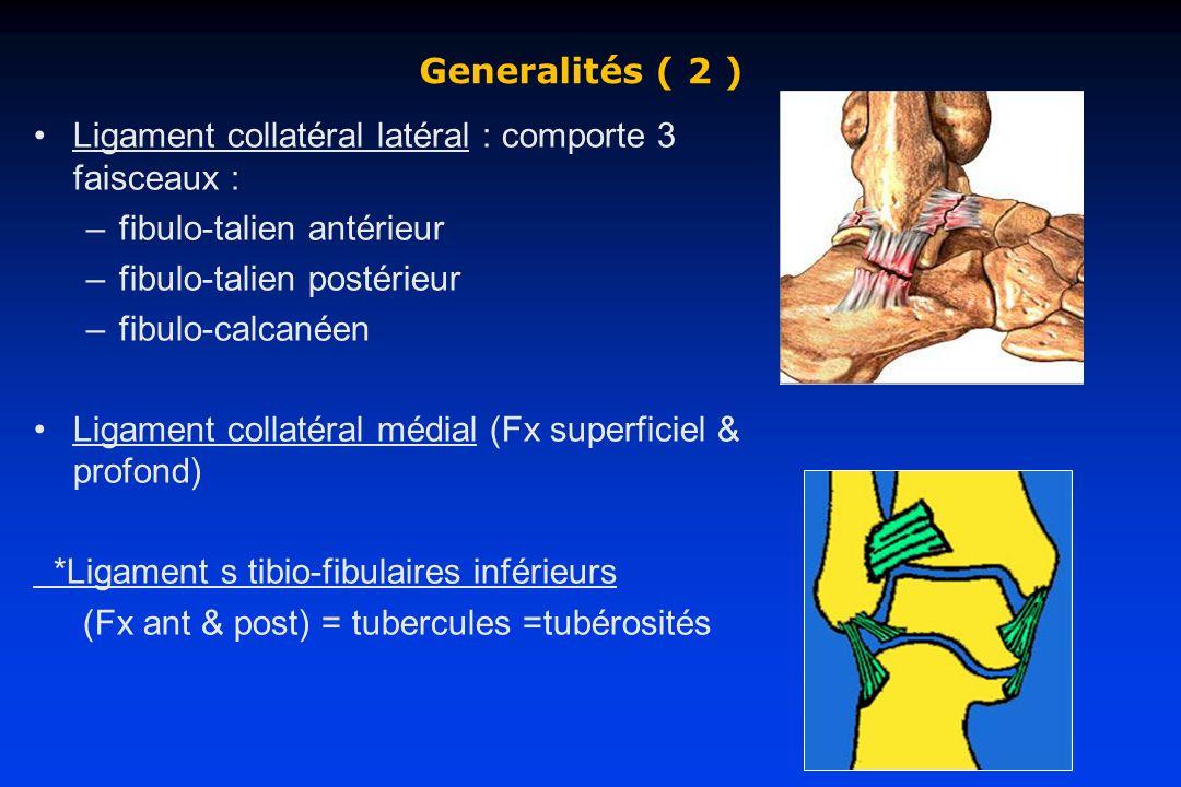 Generalités ( 2 ) Ligament collatéral latéral : comporte 3 faisceaux : fibulo-talien antérieur. fibulo-talien postérieur.
