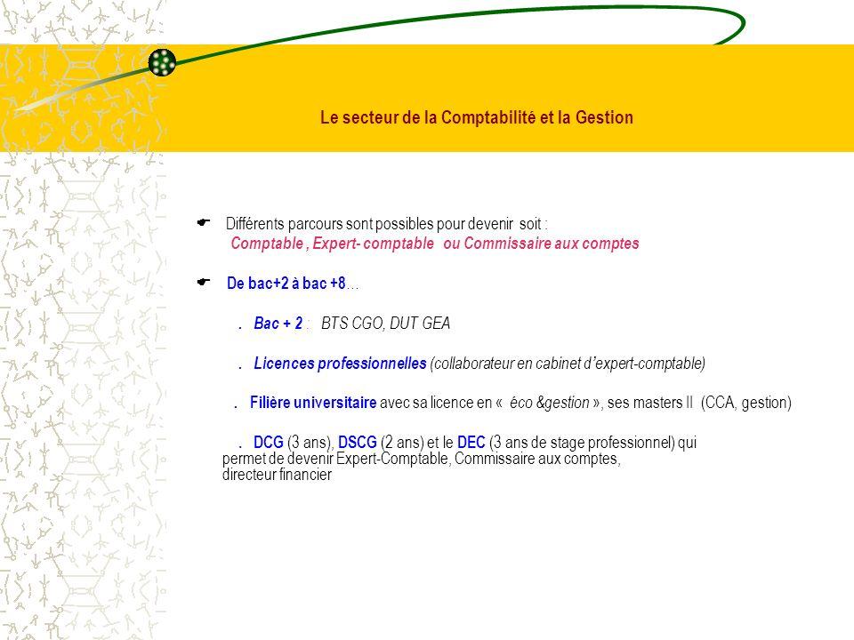 Apr s le baccalaur at es ppt t l charger - Stage en cabinet d expertise comptable ...