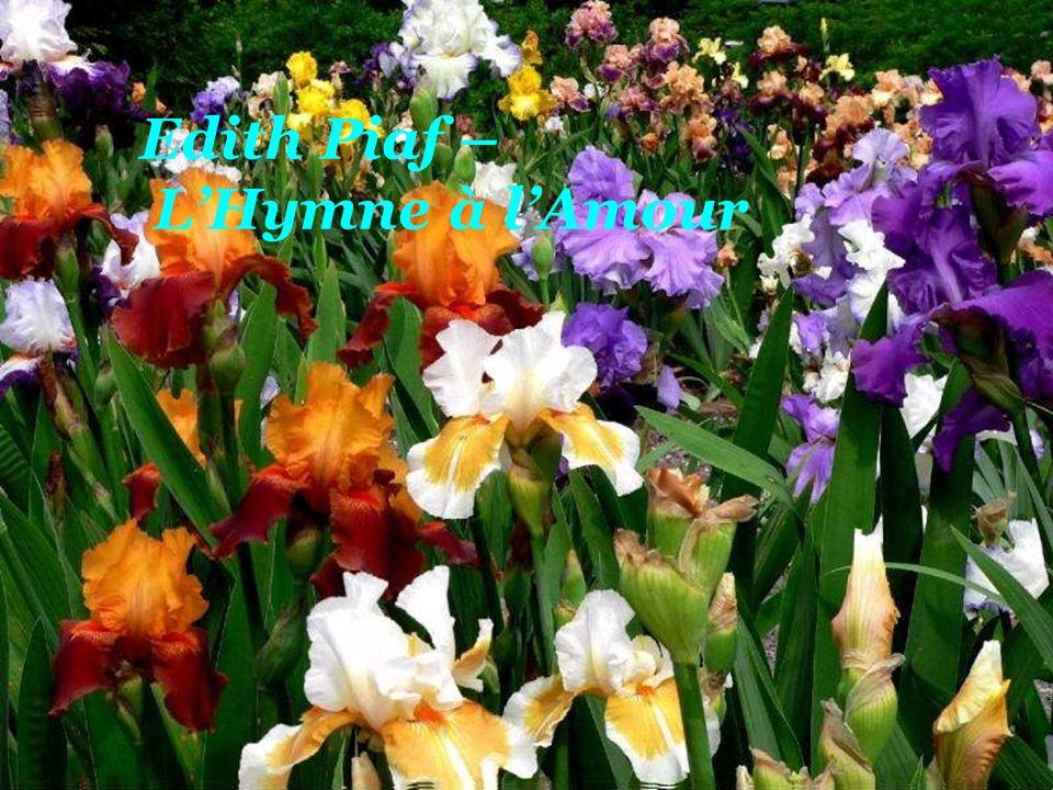 Edith Piaf – L'Hymne à l'Amour