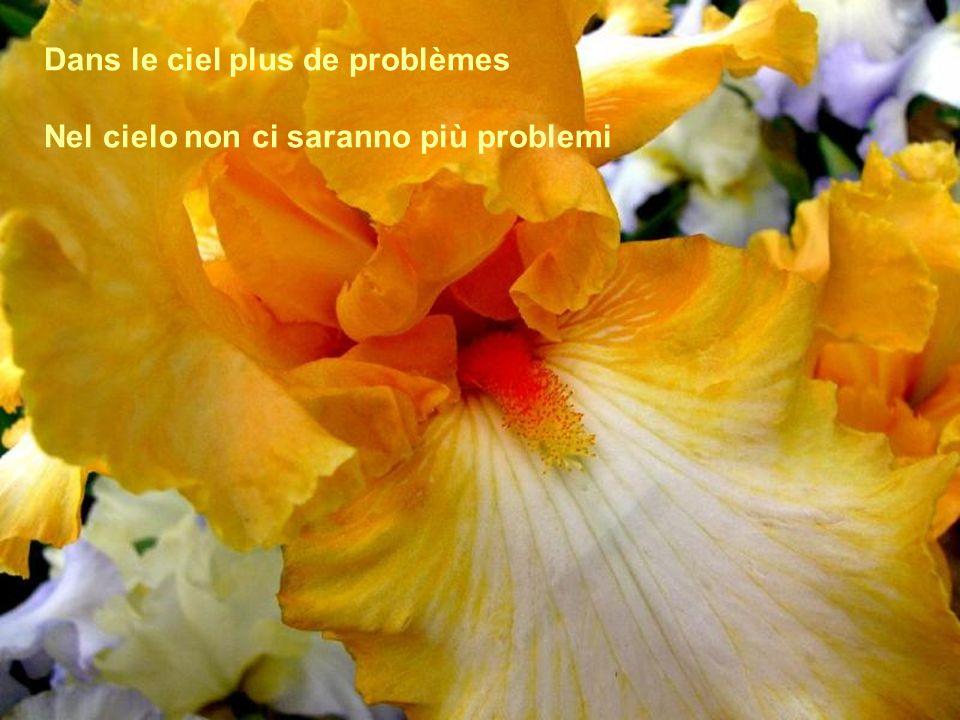 Dans le ciel plus de problèmes