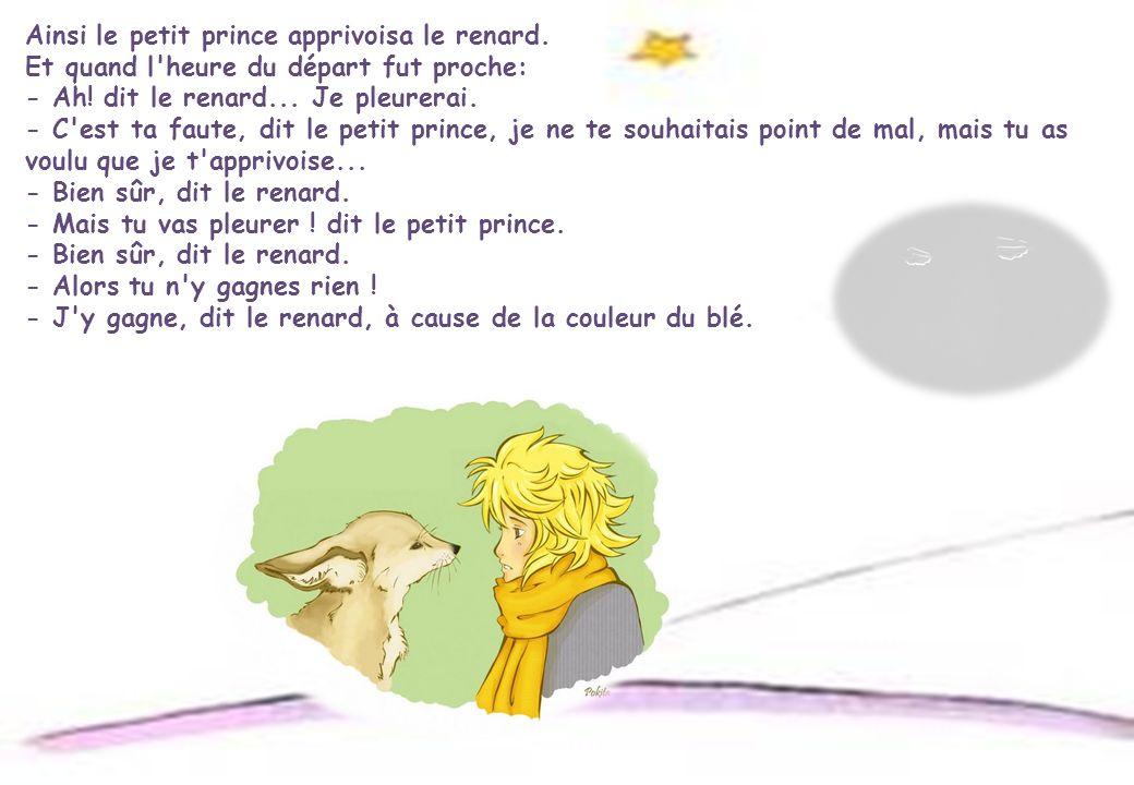 Ainsi le petit prince apprivoisa le renard.