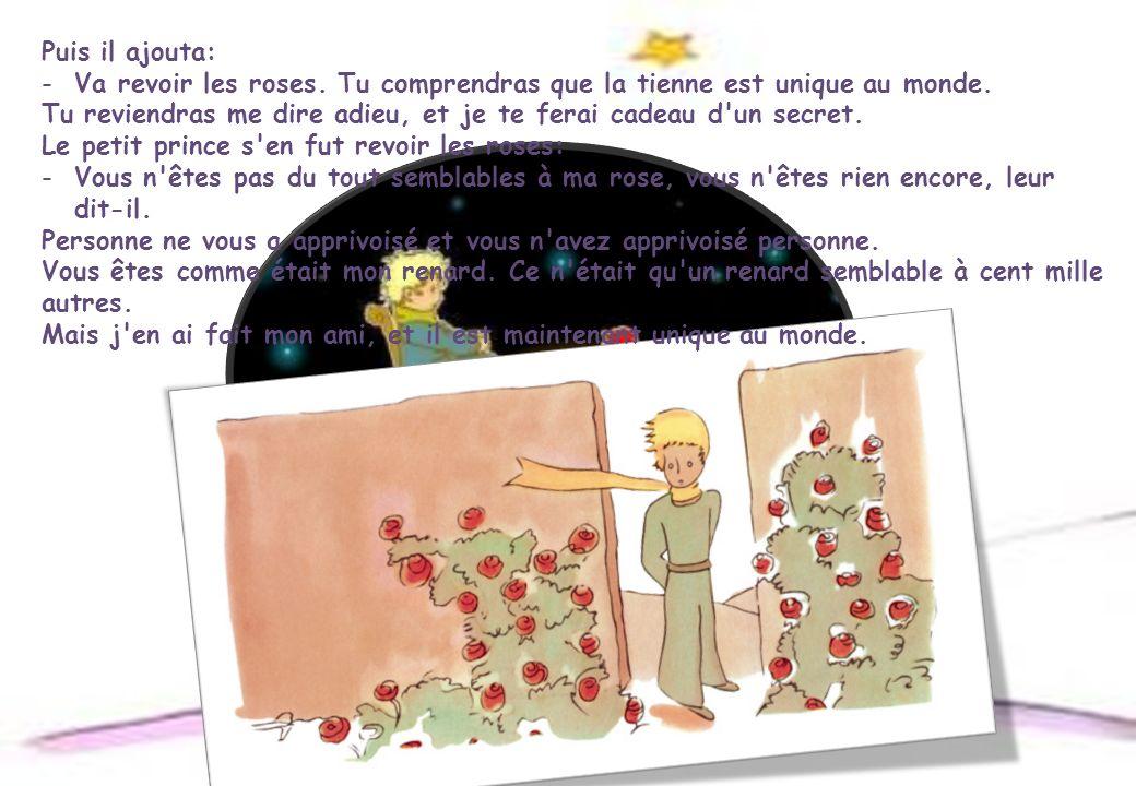 Puis il ajouta: Va revoir les roses. Tu comprendras que la tienne est unique au monde.