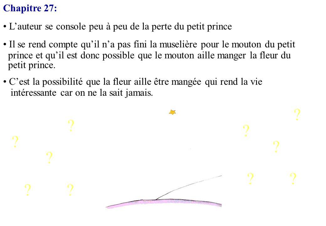 Chapitre 27: L'auteur se console peu à peu de la perte du petit prince. Il se rend compte qu'il n'a pas fini la muselière pour le mouton du petit.