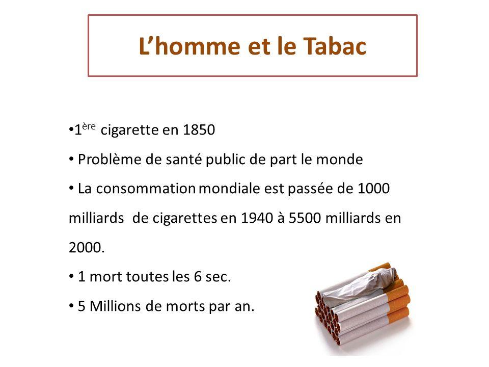 L'homme et le Tabac 1ère cigarette en 1850