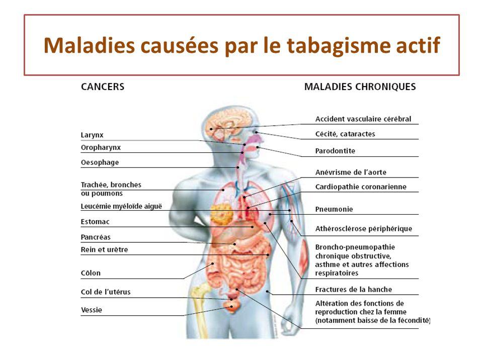 effets du tabagisme sur la santé pour soi et pour les autres 5ème SVT