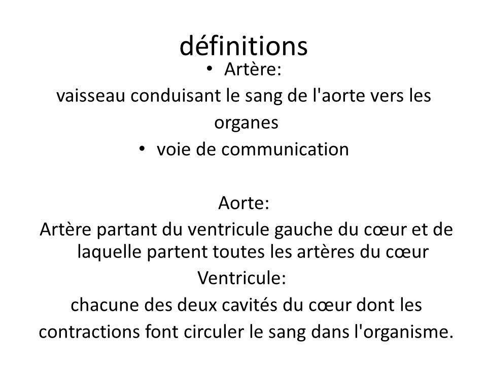 définitions Artère: vaisseau conduisant le sang de l aorte vers les