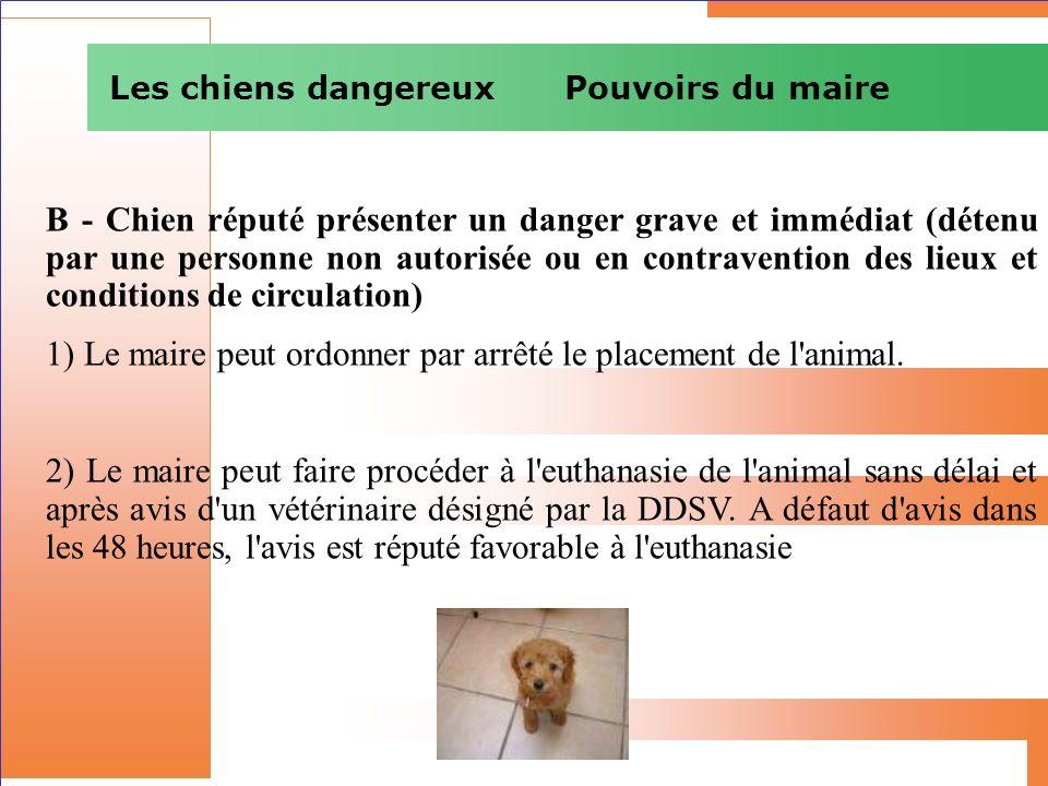 Les chiens dangereux Pouvoirs du maire