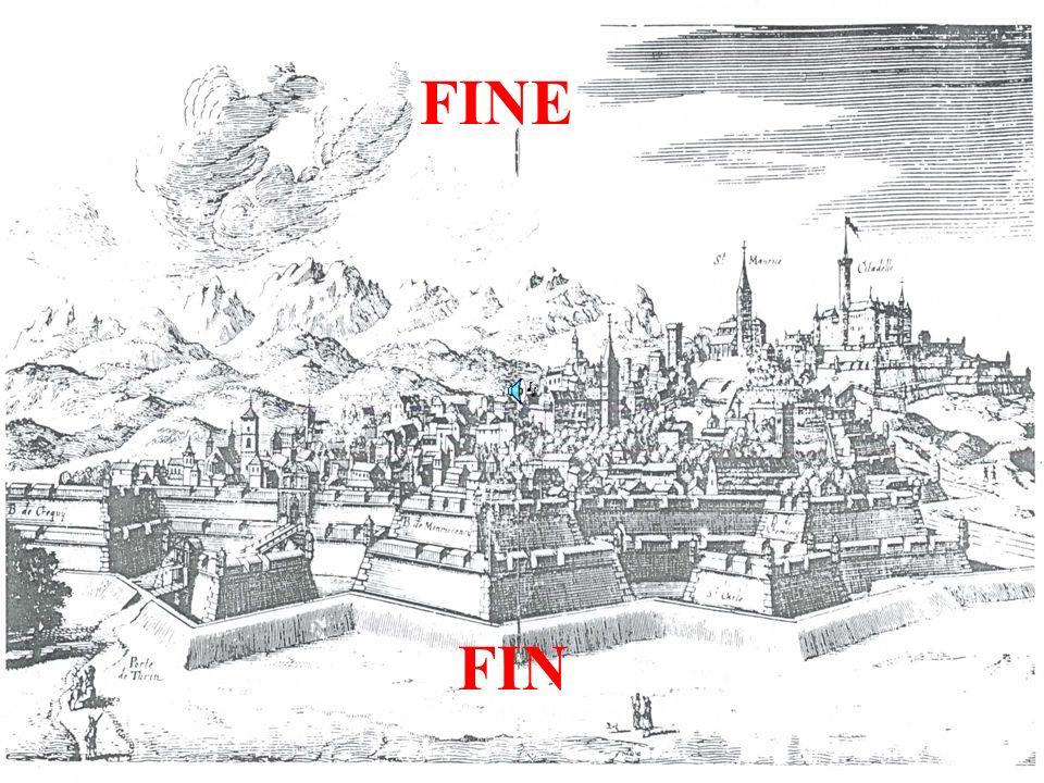 FINE FIN
