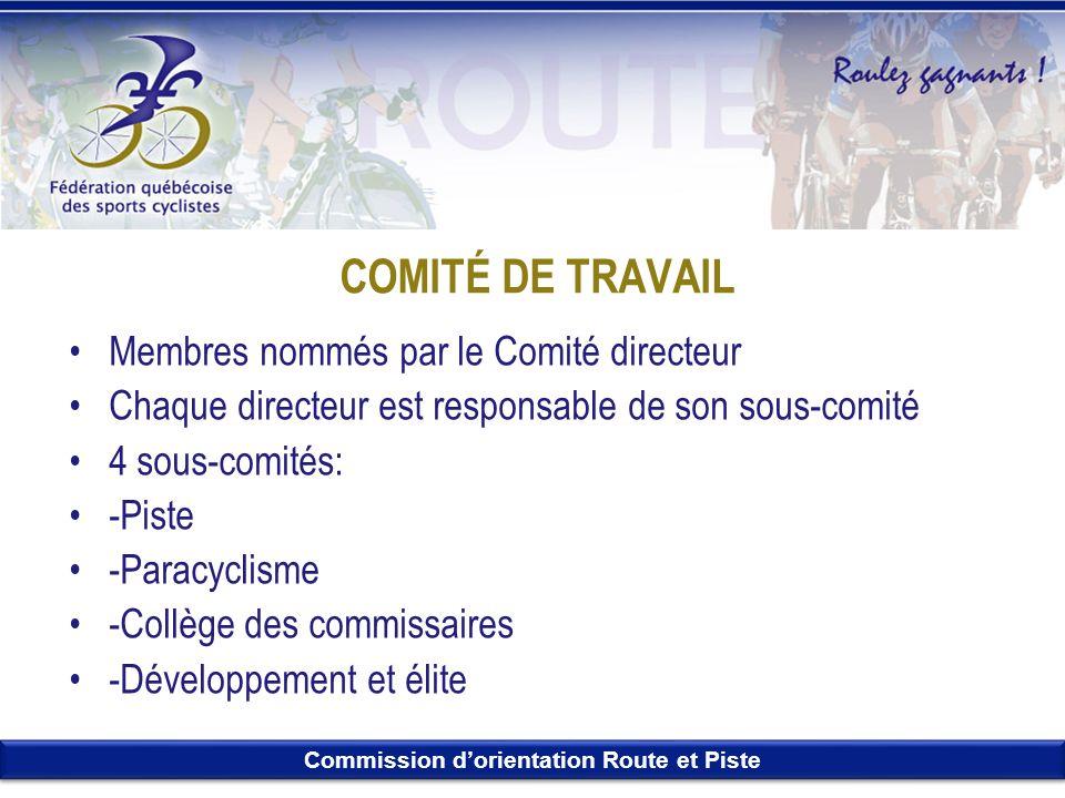 COMITÉ DE TRAVAIL Membres nommés par le Comité directeur