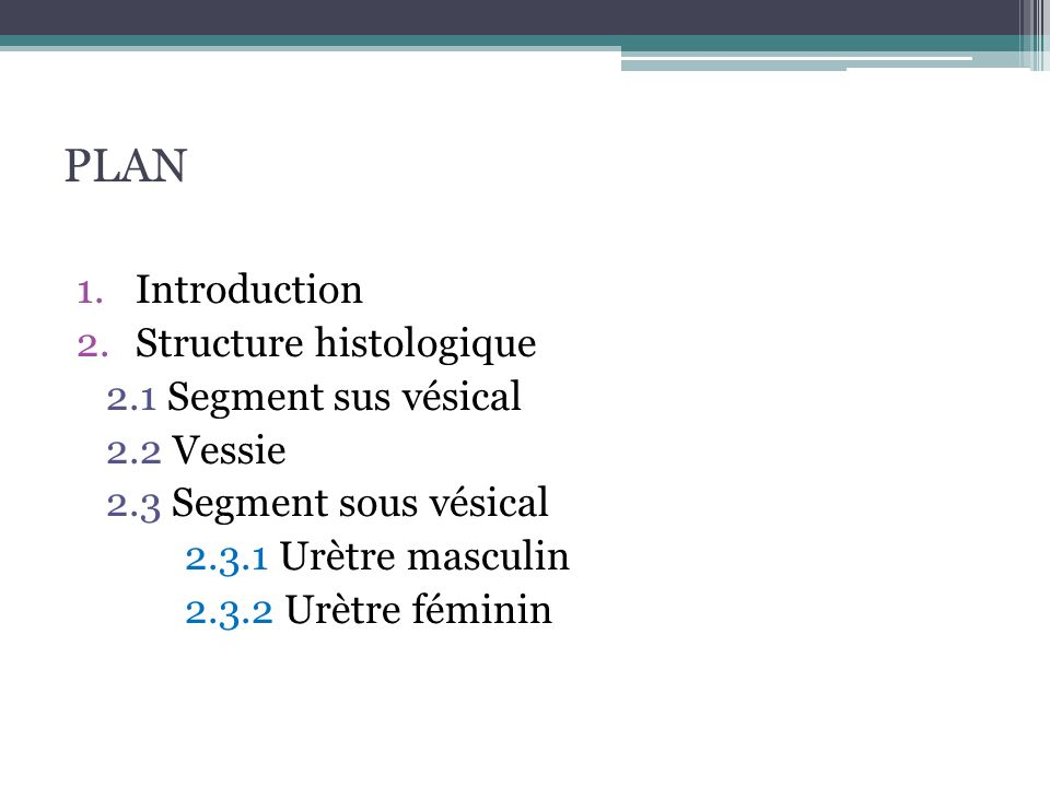 PLAN Introduction Structure histologique 2.1 Segment sus vésical