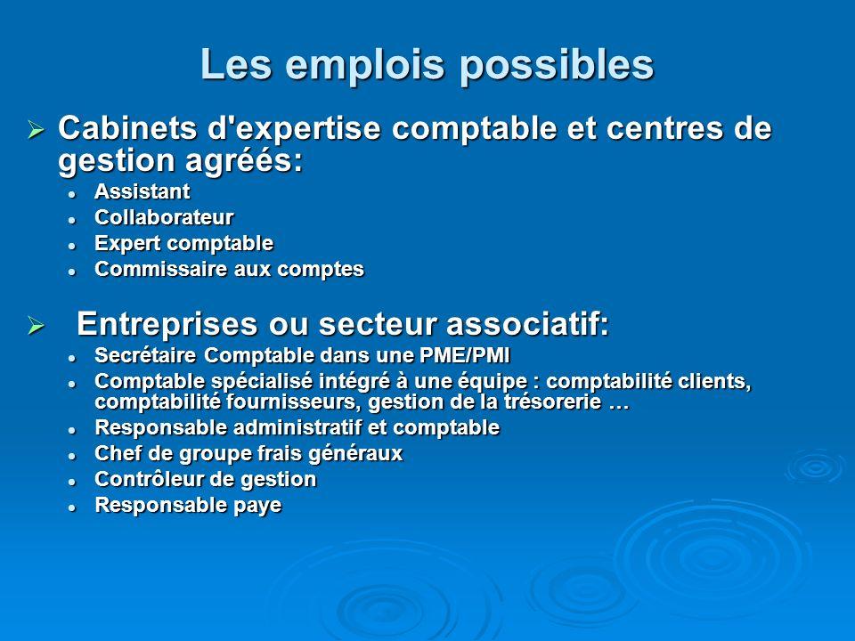 Les emplois possiblesCabinets d expertise comptable et centres de gestion agréés: Assistant. Collaborateur.