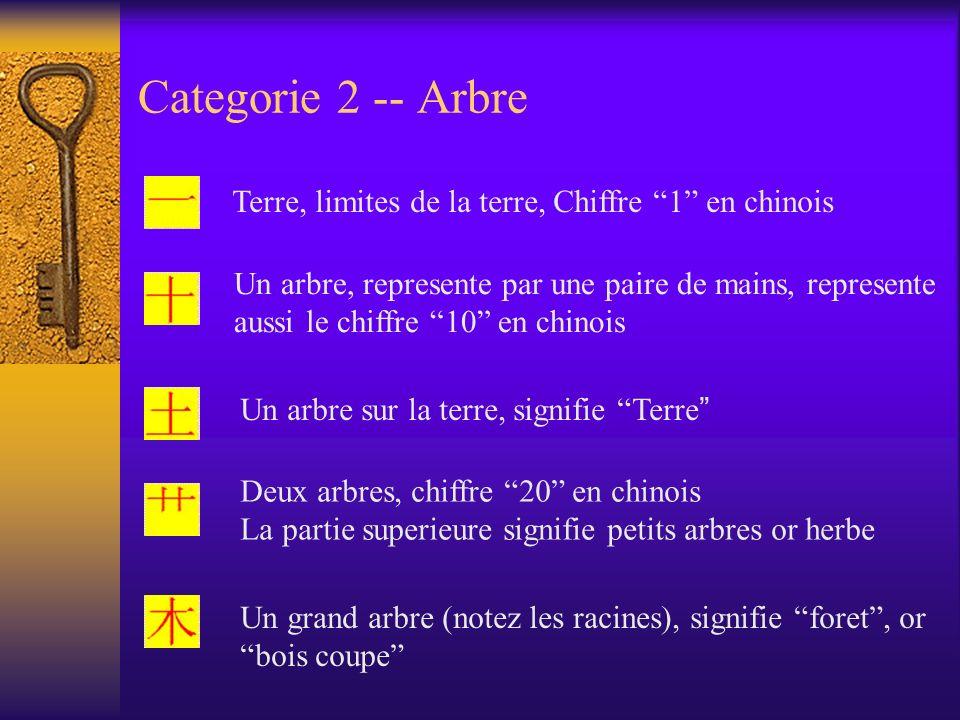 Categorie 2 -- Arbre Terre, limites de la terre, Chiffre 1 en chinois.
