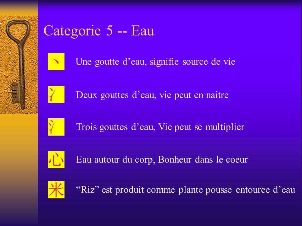 Categorie 5 -- Eau Une goutte d'eau, signifie source de vie