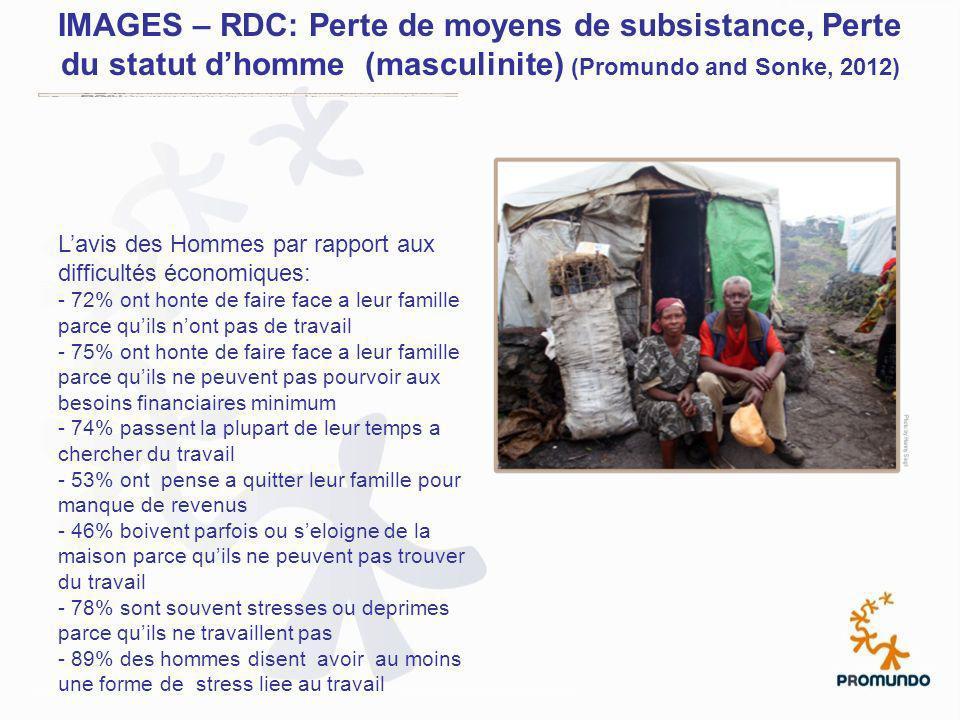 IMAGES – RDC: Perte de moyens de subsistance, Perte du statut d'homme (masculinite) (Promundo and Sonke, 2012)