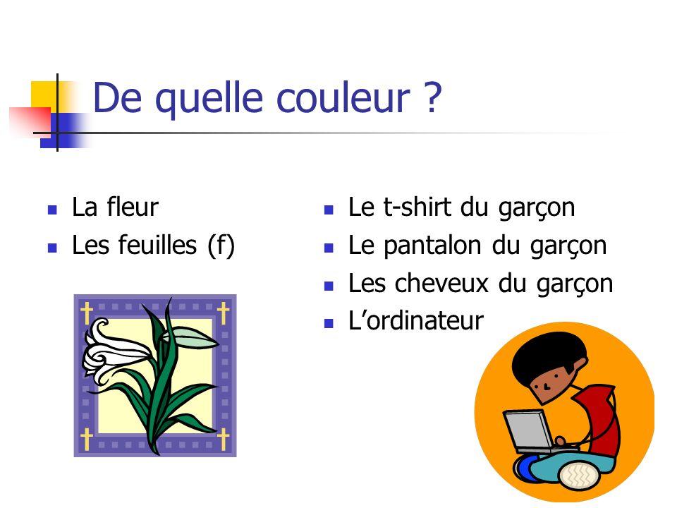 De quelle couleur La fleur Les feuilles (f) Le t-shirt du garçon
