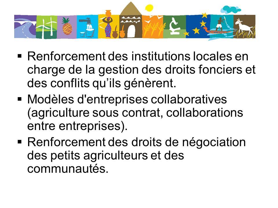 Renforcement des institutions locales en charge de la gestion des droits fonciers et des conflits qu'ils génèrent.