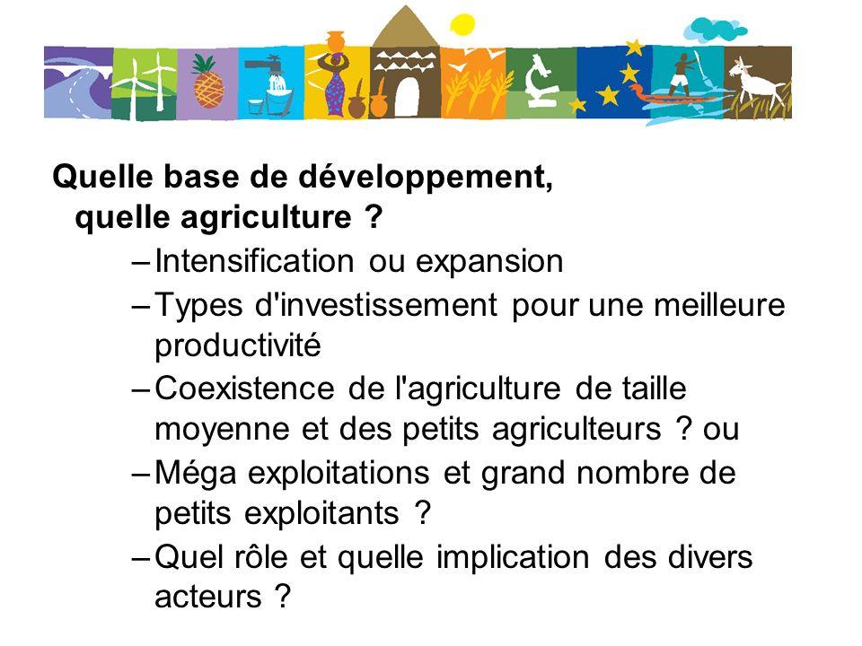 Quelle base de développement, quelle agriculture
