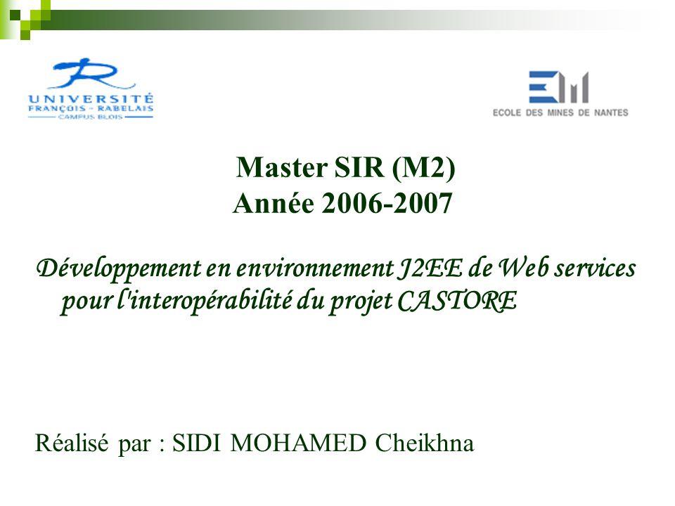 Master SIR (M2) Année 2006-2007. Développement en environnement J2EE de Web services pour l interopérabilité du projet CASTORE.