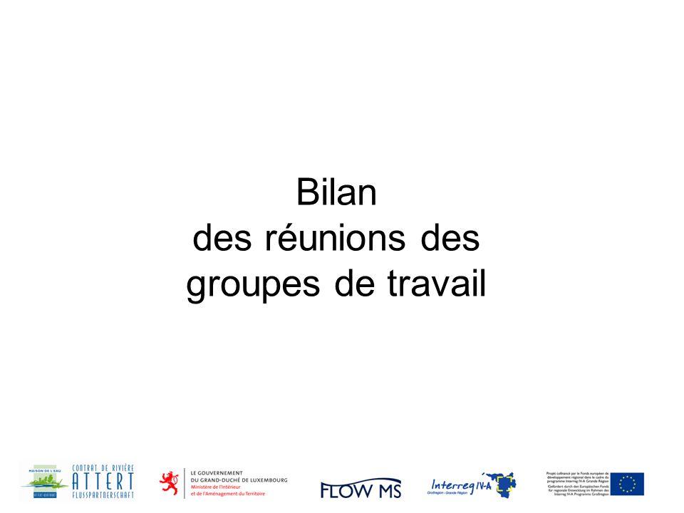Bilan des réunions des groupes de travail