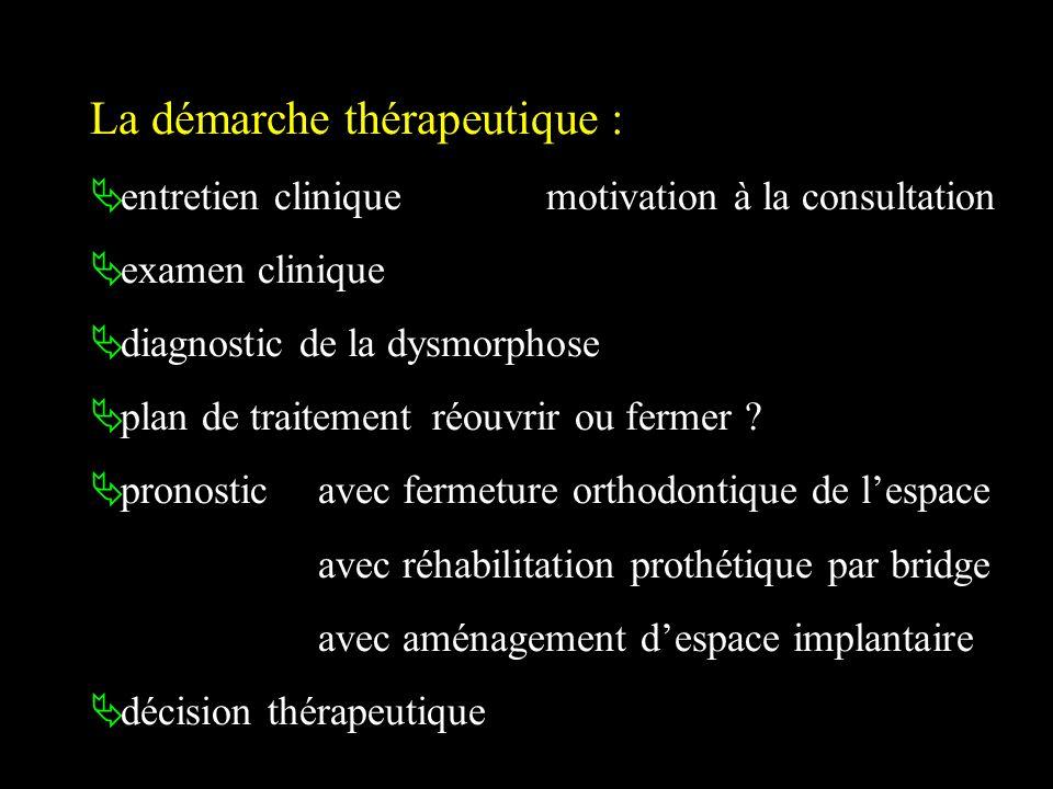 La démarche thérapeutique :