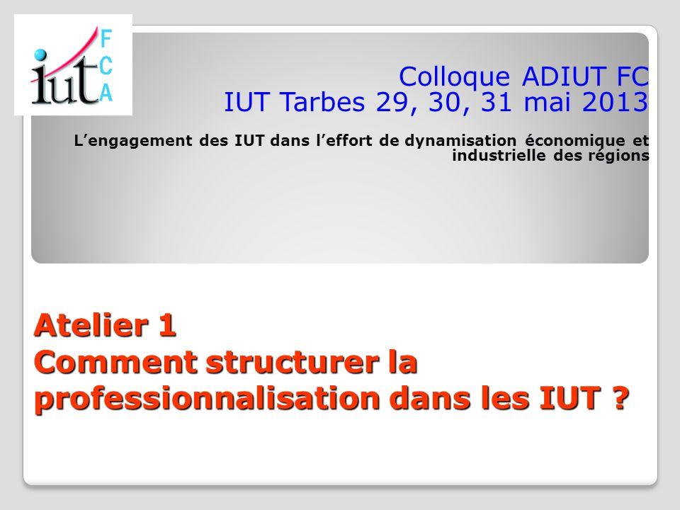 Atelier 1 Comment structurer la professionnalisation dans les IUT