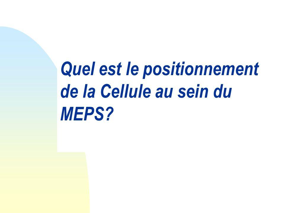 Quel est le positionnement de la Cellule au sein du MEPS