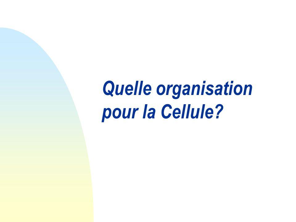 Quelle organisation pour la Cellule