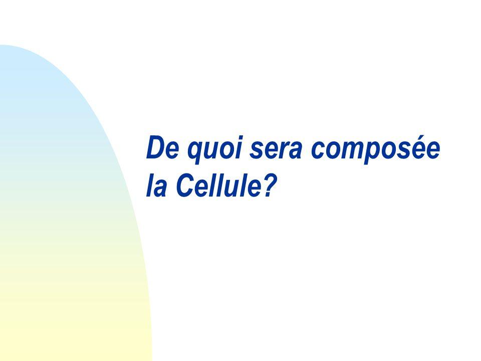 De quoi sera composée la Cellule