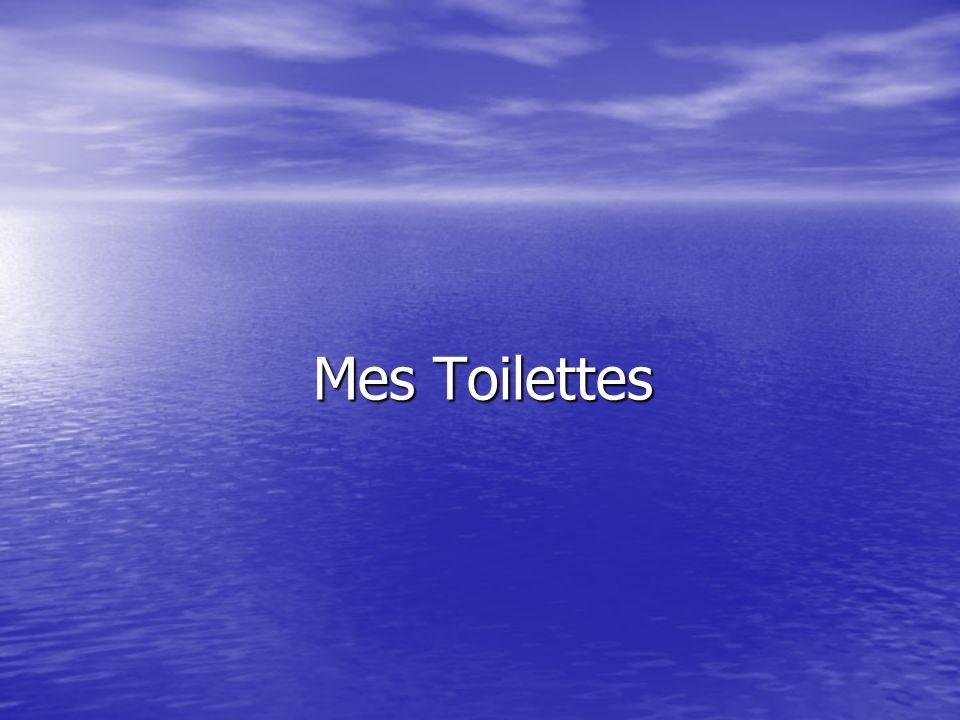 Mes Toilettes