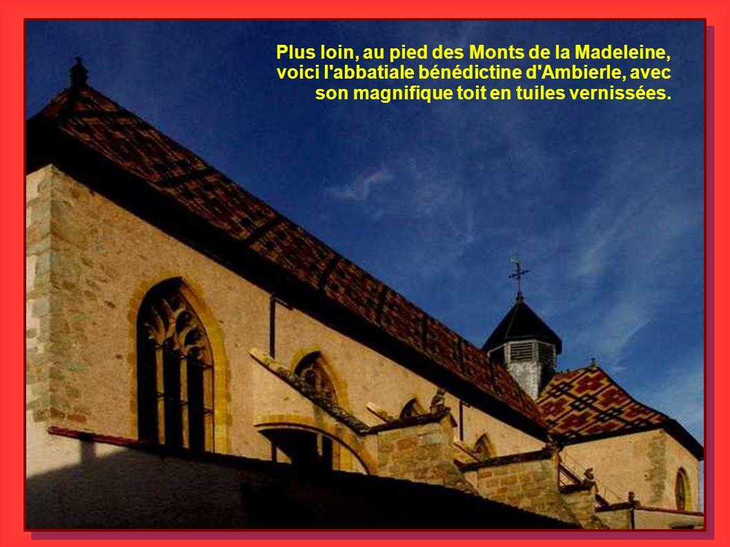 Plus loin, au pied des Monts de la Madeleine, voici l abbatiale bénédictine d Ambierle, avec son magnifique toit en tuiles vernissées.