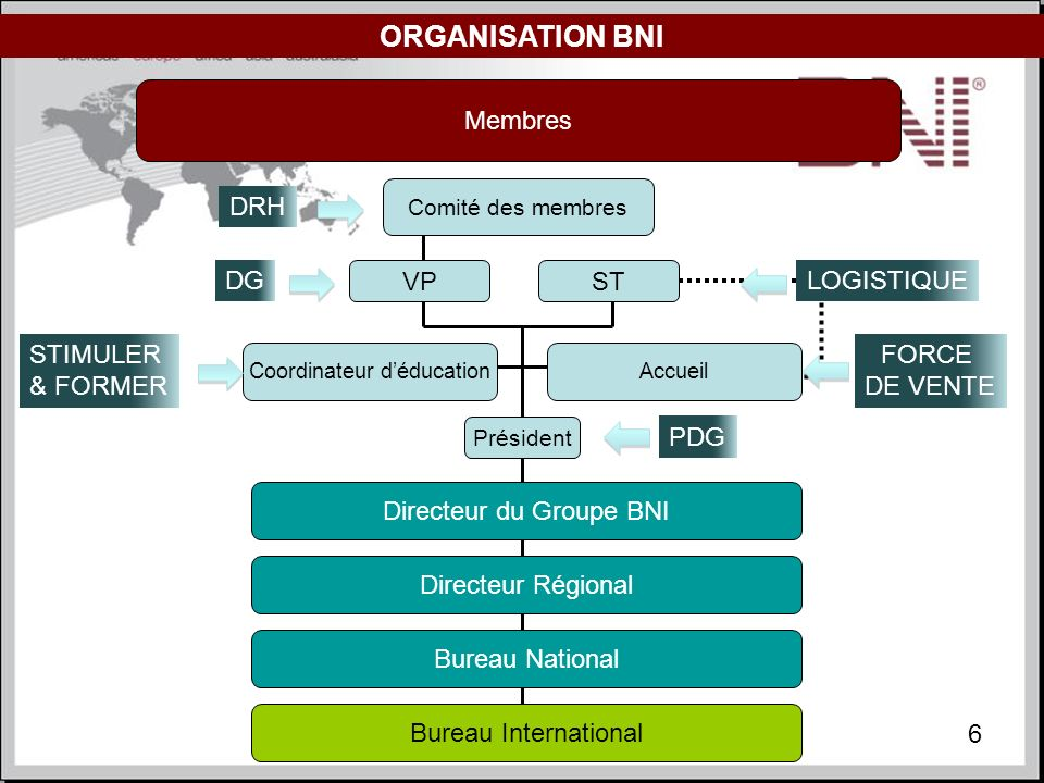 ORGANISATION BNI Membres DRH DG VP ST LOGISTIQUE STIMULER & FORMER