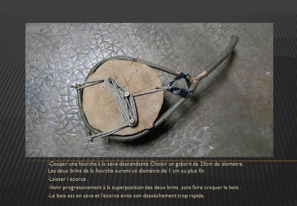 Couper une fourche à la sève descendante
