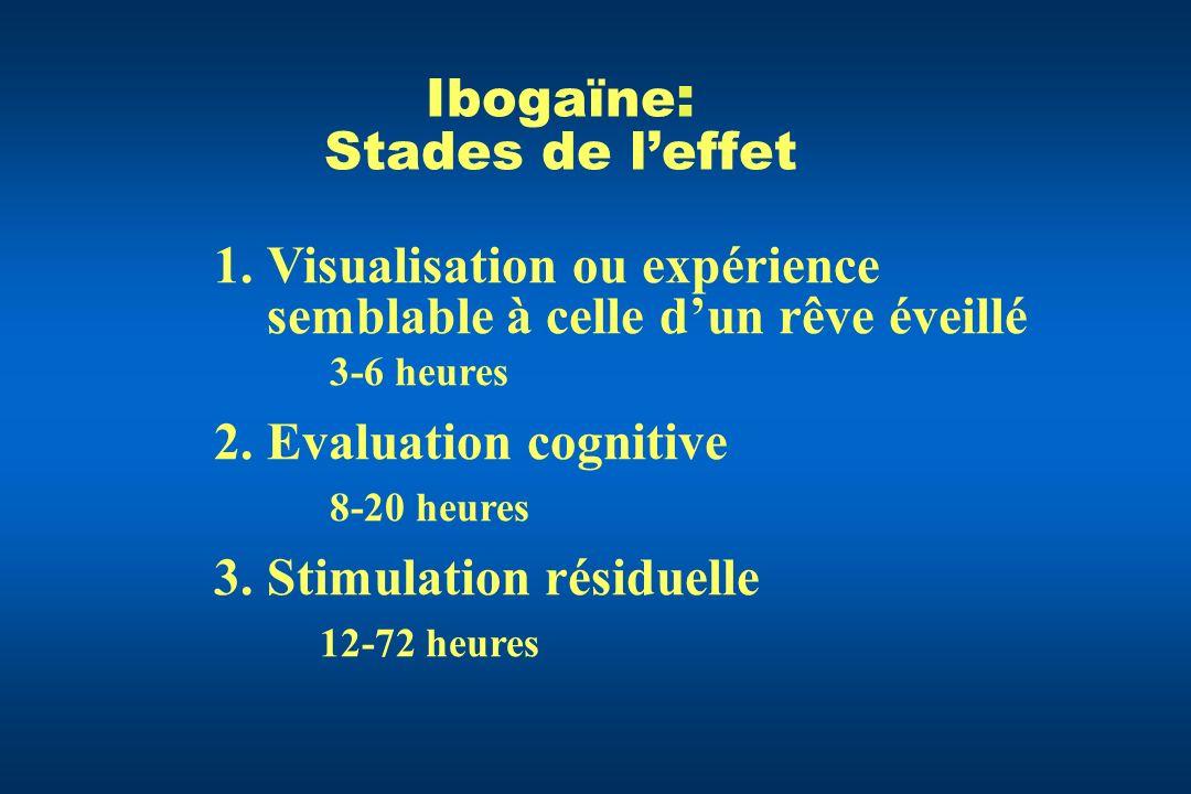 Ibogaïne: Stades de l'effet