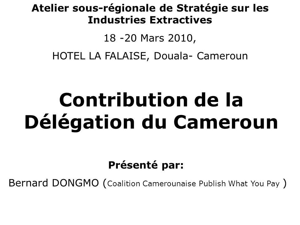 Contribution de la Délégation du Cameroun